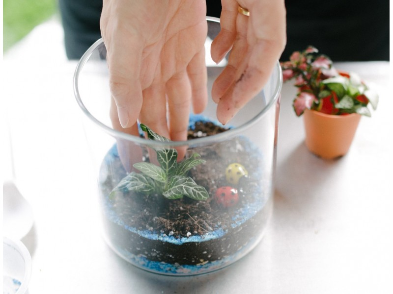 Miniature Garden Workshop for Two by The Plant Story